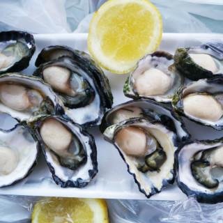 Tathra Oysters – Tathra, NSW