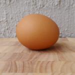 A poem a day – Haiku – Egg