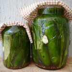 Giant dill pickles - pickled cucumber recipe #21